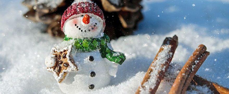 Terminy ferii świątecznych i zimowych w roku szkolnym 2018/2019. Przypominamy