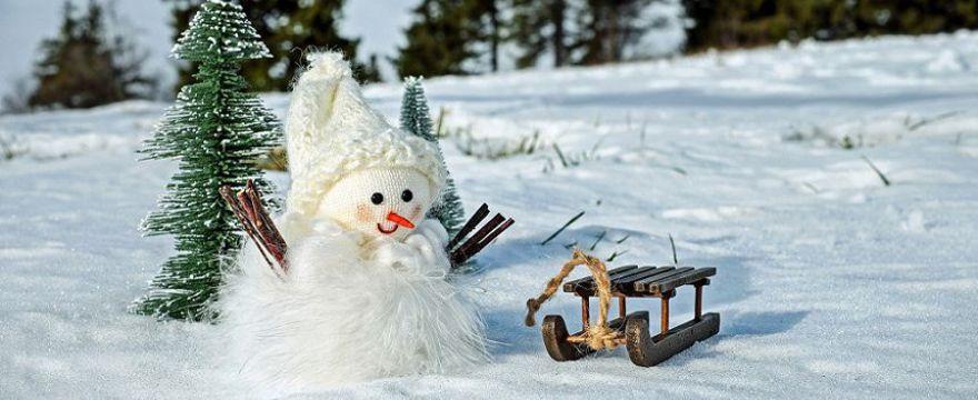 Zima w mieście z małym dzieckiem: jakie atrakcje możesz zorganizować POMYSŁY