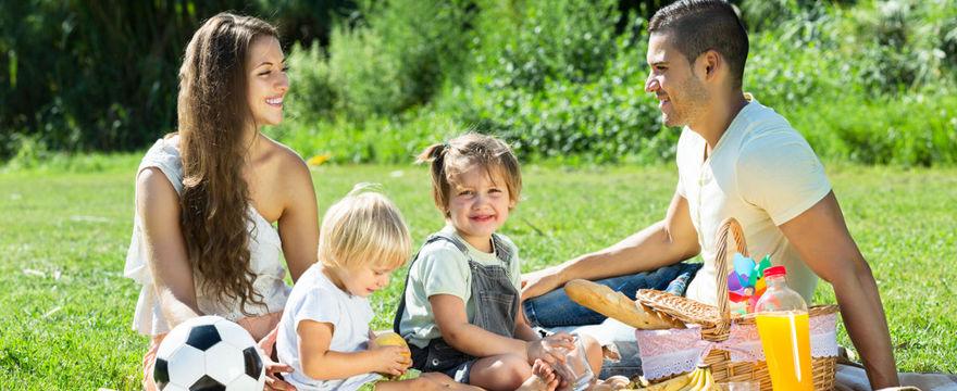 Przekąski piknikowe dla dzieci TOP 8
