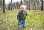 pierwszy wiosenny spacerek po lesie...