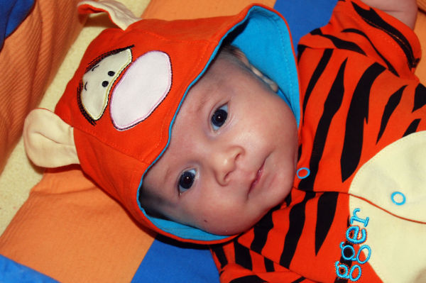 Piotruś tygrysek